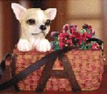 Wholesale pet items