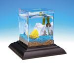 wholesale aquariums