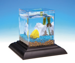 wholesale aquariums