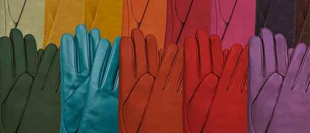 Gloves International Inc. featured image