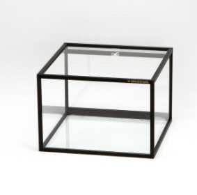 Small Display Case-Table top