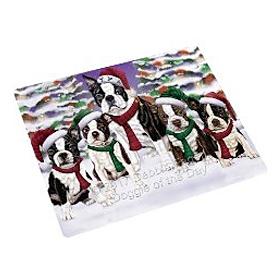 Boston Terrier Magnets