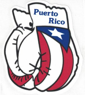 Puerto Rico Boricua Abordo with Coqui Decal Sticker