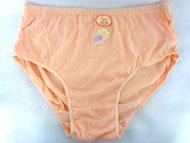 Lady's Cotton UNDERWEAR - Color Embroidered - #L470 #L470CS/Q