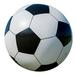 WHITE 16 INCH SOCCER BALL INFLATABLE