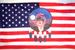 USA WITH WOLF DREAM CATCHER FLAGS