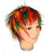 Gay Pride Hackle WIG