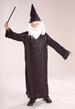 HOLIDAY Halloween  Wizard Boy