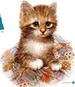 Apparel T-shirts Furry Friends Animals Cat Printed:''PATCHES''