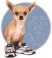 Apparel T-shirt Animals Dogs Printed:''Walking In My SHOES''
