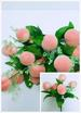 Artificial Plastic FLOWERS Fruits Peach 5 Heads